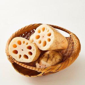 【常温】(後回し)杏里ファームの杏里農園産れんこん家庭用1kg(12月末〜3月中旬頃発送)
