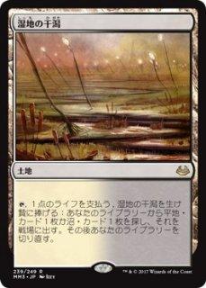 湿地の干潟/Marsh Flats