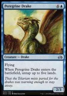 流浪のドレイク/Peregrine Drake
