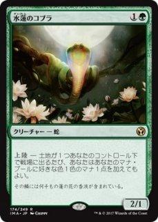 水蓮のコブラ/Lotus Cobra