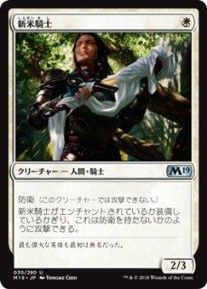 新米騎士/Novice Knight
