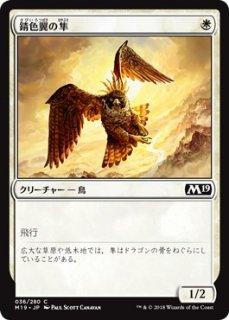 錆色翼の隼/Rustwing Falcon