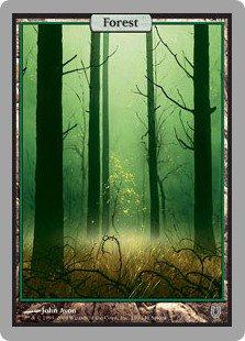 森/Forest