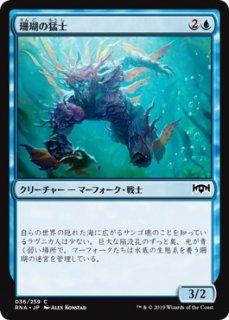 珊瑚の猛士/Coral Commando