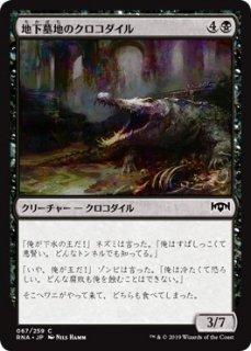地下墓地のクロコダイル/Catacomb Crocodile