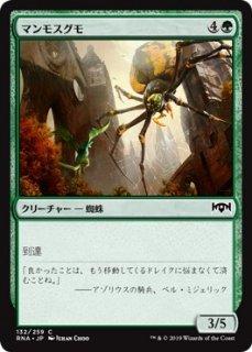 マンモスグモ/Mammoth Spider
