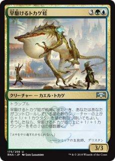 早駆けるトカゲ蛙/Galloping Lizrog