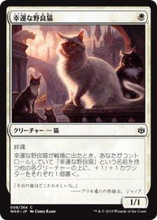 幸運な野良猫/Charmed Stray