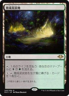 育成泥炭地/Nurturing Peatland