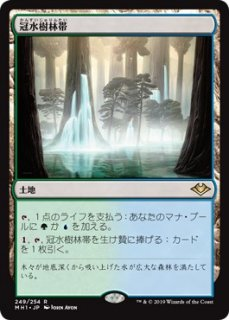 冠水樹林帯/Waterlogged Grove