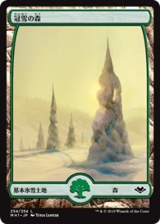 冠雪の森/Snow-Covered Forest