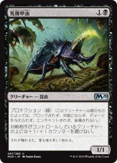 荒廃甲虫/Blightbeetle