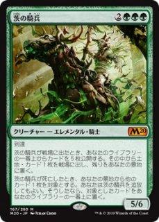 茨の騎兵/Cavalier of Thorns