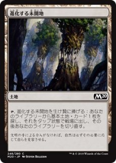 進化する未開地/Evolving Wilds