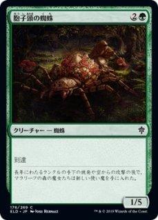 胞子頭の蜘蛛/Sporecap Spider