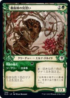 薔薇棘の見習い/Rosethorn Acolyte