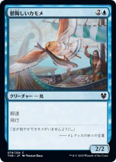 鬱陶しいカモメ/Vexing Gull