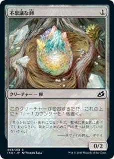 不思議な卵/Mysterious Egg