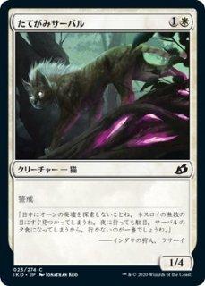 たてがみサーバル/Maned Serval