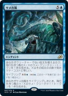 サメ台風/Shark Typhoon