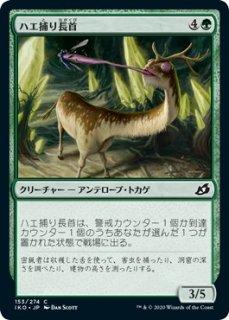 ハエ捕り長首/Flycatcher Giraffid