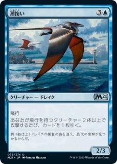 潮掬い/Tide Skimmer