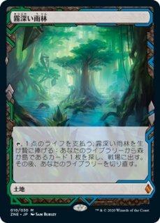 霧深い雨林/Misty Rainforest