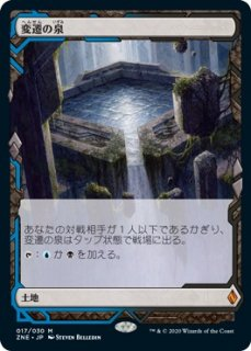 変遷の泉/Morphic Pool