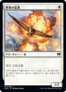 戦場の猛禽/Battlefield Raptor