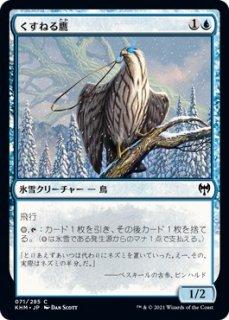 くすねる鷹/Pilfering Hawk