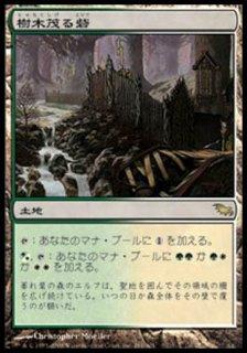 樹木茂る砦/Wooded Bastion