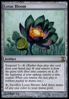 睡蓮の花/Lotus Bloom