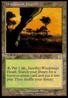 吹きさらしの荒野/Windswept Heath