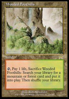 樹木茂る山麓/Wooded Foothills