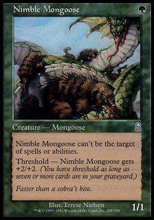 敏捷なマングース/Nimble Mongoose