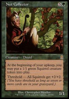 木の実拾い/Nut Collector