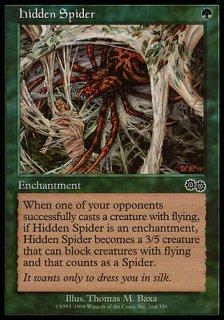 隠れたる蜘蛛/Hidden Spider