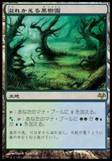 溢れかえる果樹園/Flooded Grove