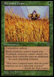 エレファント・グラス/Elephant Grass