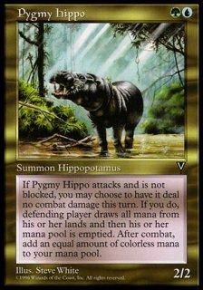 コビトカバ/Pygmy Hippo