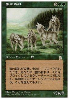 狼の群れ/Wolf Pack