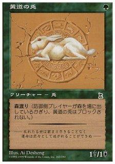 黄道の兎/Zodiac Rabbit