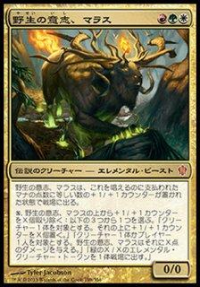 野生の意志、マラス/Marath, Will of the Wild