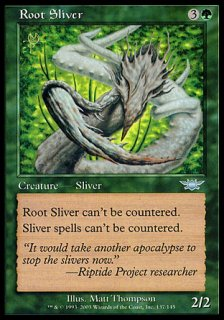 樹根スリヴァー/Root Sliver