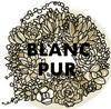 多肉植物・フラワー・雑貨・アンティークの通信販売 BLANC PUR(ブランピュア)