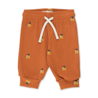 <b>tinycottons</b></br>21aw DOGS BABY PANT<br>true brown/honey<img class='new_mark_img2' src='https://img.shop-pro.jp/img/new/icons1.gif' style='border:none;display:inline;margin:0px;padding:0px;width:auto;' />