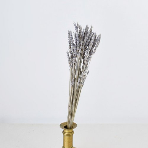 ドライ・ラベンダー ホワイトウォッシュ 25-30 cm 1束15g
