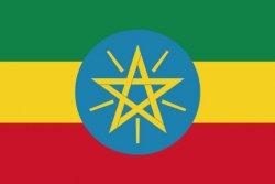 エチオピア レケンプティ G4(Ethiopia Lekempti G4)