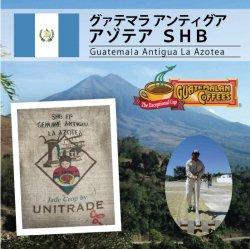【新豆入荷】グァテマラ アゾテア SHB(Guatemala Azotea SHB )