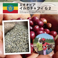 エチオピア イルガチャフィ G2(Ethiopia Yirgacheffe G2 )